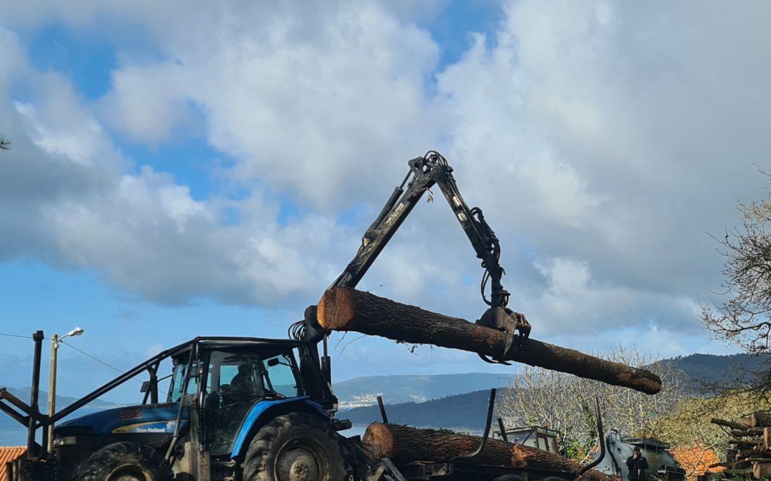 Fearmaga difunde o traballo dos serradoiros galegos que transforman madeira para barcos