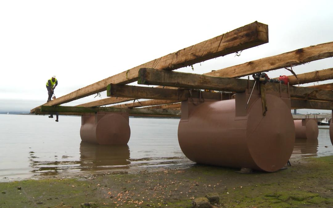 La madera de las bateas gallegas, ejemplo europeo de econonomía circular